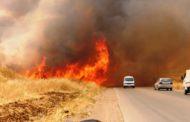 الإدارة الذاتية تعوض المزارعين المتضريين من الحرائق بتقديم البذار مجاناً