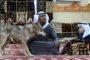 ارياف ادلب وحلب تتعرض لقصف جوي متواصل.. ومقتل 73 مدني خلال أسبوع