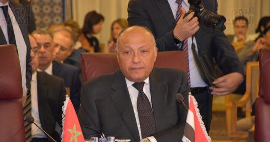 سامح شكري يطالب بعودة سوريا لمقعدها بالجامعة العربية ويدعو لوقف التدخل العسكري التركي في سوريا