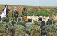 عملية تبادل للأسرى بين الجيش السوري وفصيل