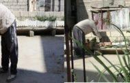 أبو أحمد السوري: يزرع سطح بيته بالخضروات لمواجهة الغلاء الفاحش!
