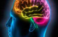 لماذا تقوم أنظمة الجسم الدفاعية بنسيان الذكريات الحزينة ؟ العلماء يفسرون ..