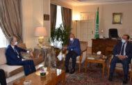 الأمين العام لجامعة الدول العربية يؤكد عدم وجود حل عسكري في سوريا