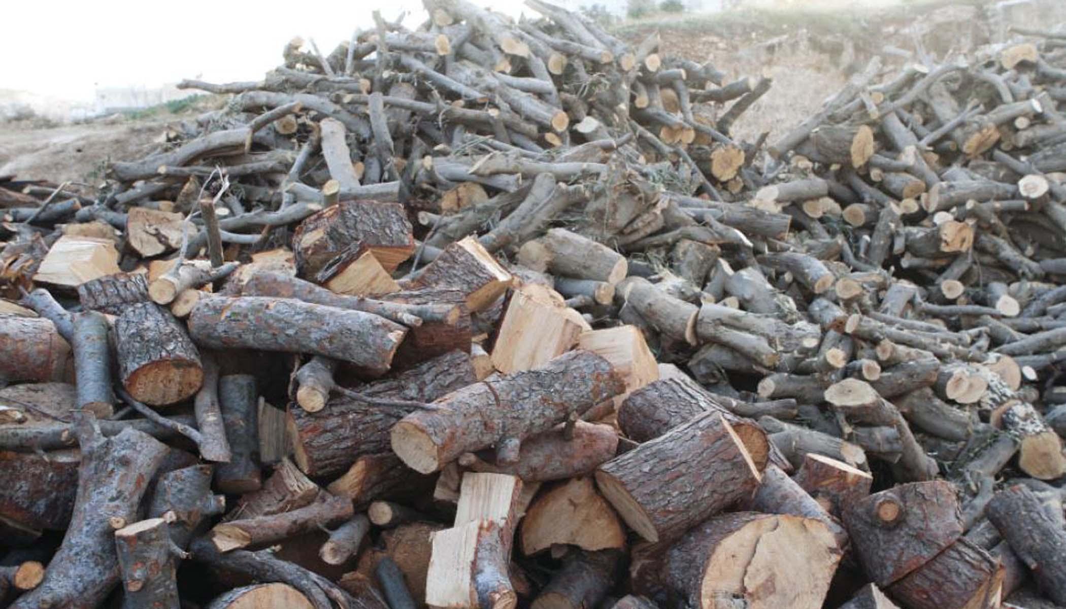 حماة.. الأهالي يلجؤون إلى شراء الحطب للتدفئة مع تأخر توزيع المازوت وزيادة التقنين