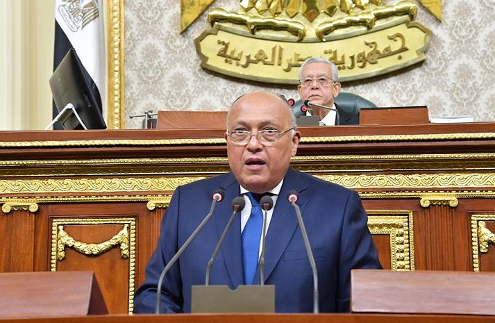 شكري: تعقيدات تحول دون عودة العلاقات مع سوريا ونتطلع لعودتها إلى محيطها العربي