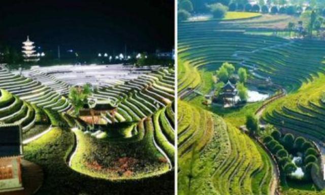 قرويون يحولون أراضي قاحلة في الصين إلى حقول بمظهر جمالى..
